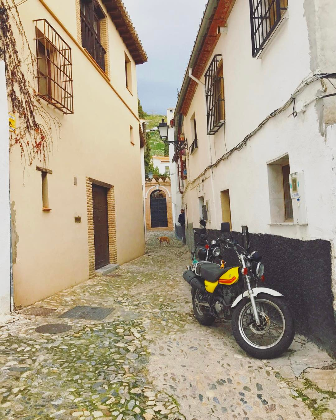 Monday commute with that Euro swag  iwish moto spainlyfe